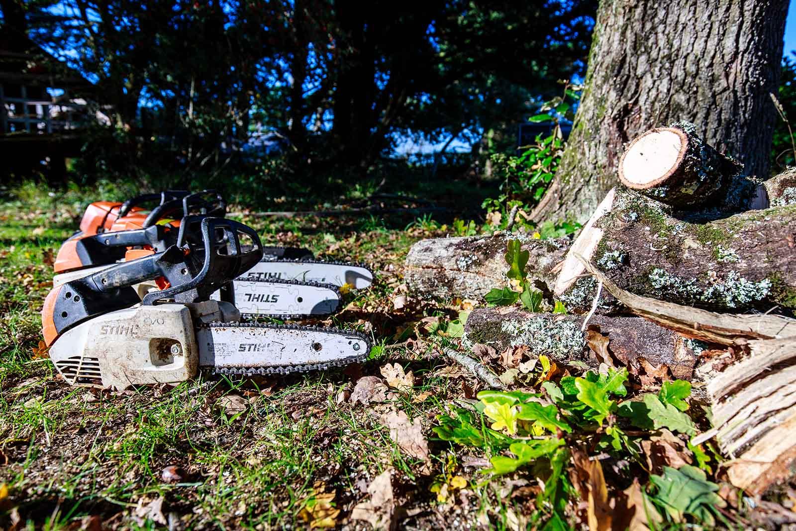 travaux d'élagage Tronçonneuse abaca élagage environnement